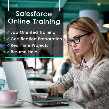 Salesforce CRM Admin Developer Training program and Certification